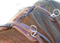 piece harnais cheval